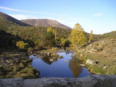 Rumalgas de Gredos.